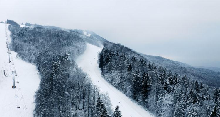Snow Monkey – Meta Hrovat story