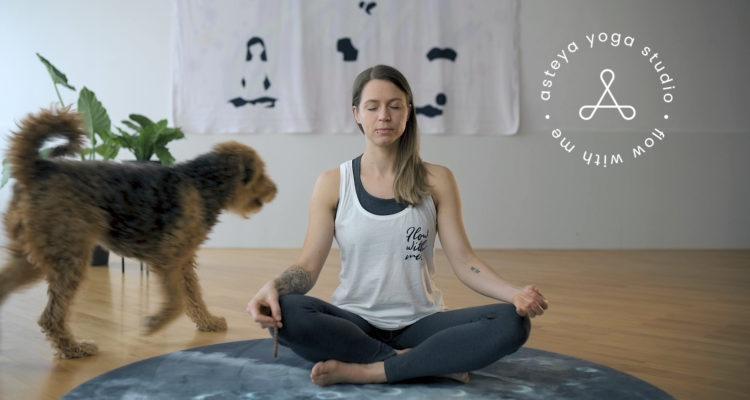 Asteya yoga studio